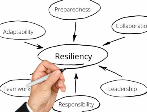 Building a Resilient Organization